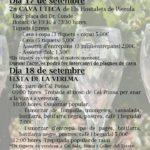 Festa Verema 16